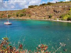 Honolua Bay - Maui