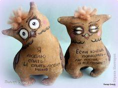Куклы Шитьё Ароматные совушки и котята Ткань фото 4