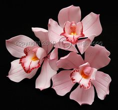 } Gumpaste Orchid - Cymbidium by Paige Fong, via… Bolo Fondant, Fondant Flower Cake, Fondant Rose, Fondant Toppers, Fondant Baby, Fondant Cakes, Ceramic Flowers, Clay Flowers, Paper Flowers