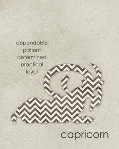 Capricorn ~ dependable. patient. determined. practical. loyal. You can forget the patient part!