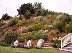 terracing a hillside