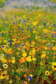 Klimt inspired wildlife meadow photo by Kenan Malik. London Olympic Park, August I so wanted this to be an actual Klimt painting! Gustav Klimt, Klimt Art, Art For Art Sake, Love Art, Amazing Art, Art Drawings, Scenery, Painting Art, Fine Art Paintings