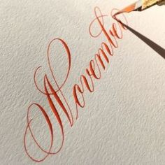 """2,509 Likes, 155 Comments - Suzanne Cunningham (@suzcunningham) on Instagram: """"How is it November?? . #calligraphy #calligraphymasters #november #vermillionsumi #nikkog…"""""""