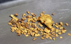 Special 'nugget-producing' bacteria may hold the key to more efficient processing of gold ore, mine tailings and recycled electronics, ...