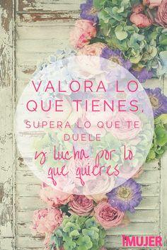 #Frases ¡Lucha por lo que quieres!