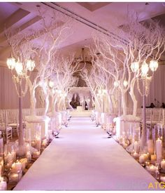 This would be a great landscape for the bride that wants a winter wonderland theme. I worry about the branches being in the way of some guests being able to see. I would have them shorter and put the lamp posts at the very beginning of the aisle when the bride first comes out.