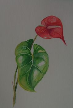 Theater, Painting, Watercolor, Flowers, Inspiration, Drawings Of Dogs, Landscape Design, Crochet Leaves, Watercolors