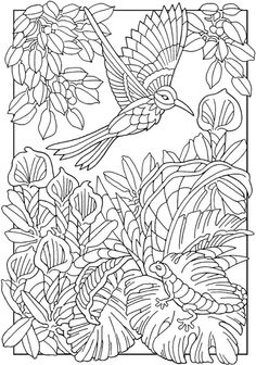 Dover Creative Haven Paradise Designs Coloring Page 5 Adult PagesColoring SheetsColoring