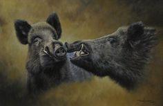 Year Of The Boar, Hog Dog, Natur Tattoos, Boar Hunting, Pig Drawing, Pig Art, Wild Boar, Old Maps, Wildlife Art