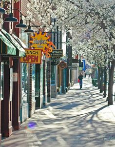 Front Street in downtown Traverse City by Pure Michigan, via Flickr