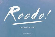 Roodo Dry Brush Font example image