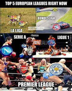Tình hình bây giờ về các liên đoàn thể thao, ai hiểu rõ?