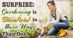 Your body needs perpetual motion to function optimally, and gardening is one way to help you stay active. http://fitness.mercola.com/sites/fitness/archive/2014/06/27/gardening-health-benefits.aspx