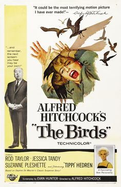 A great poster from The Birds - the unforgettable classic movie from Master of Suspense Alfred Hitchcock! Check out the rest of our excellent selection of Alfred Hitchcock posters! Need Poster Mounts. Classic Movie Posters, Horror Movie Posters, Classic Movies, Film Posters, Horror Movies, Old Movie Posters, Comedy Movies, Scary Movies, Old Movies