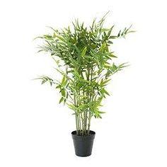 FEJKA Pianta artificiale, bambù - IKEA