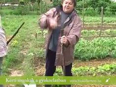 Biokertészkedés Jutka mamával