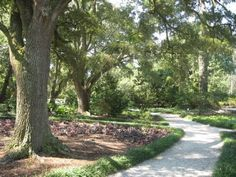 Airlie Gardens, Wilmington, NC