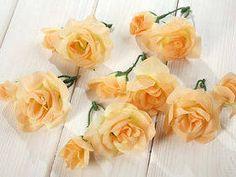 Róże 4-8 cm  12 szt/op  - słoneczne