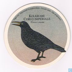 Beer mats - Switzerland - Vogels: Kolkrabe Corvo Imperiale / Edelbräu