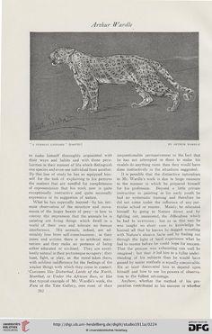 Studio International Art magazine, Volume 52, 1911.
