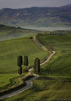 Country Farm Track, Tuscany, Italy. © Brian Jannsen Photography