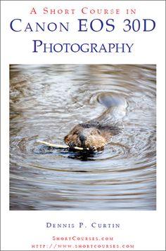 Curso rapido de fotografía con la Canon EOS 30D