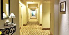 Disfrute de la gran variedad de servicios y comodidades de nuestras suites del hotel de Miami;  excelente ubicación, salones para reuniones para una cálida y gratificante estadía en Comfort Suites Miami.    Read more at http://comfortsuitesmiami.com/sp/services-amenities.