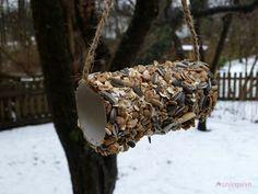 Frühlingsreh: Vogelfutter von der Rolle