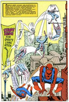 The Secrets of Spider-Man by Steve Ditko