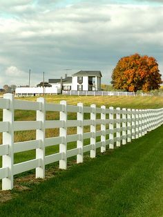 This is a must have... White fence enclosing my entire property... LOVE IT!