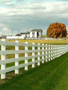 the farm...