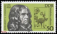 Adelbert von Camisso auf Briefmarke der DDR 1981