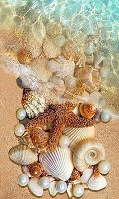 We are like shells on the beach; Waves of life wash over and renew us; some shells are removed and we may never see them again- we will always remain connected for that momentary wave that we were nourished and bonded -.Crystal clear Ocean water and