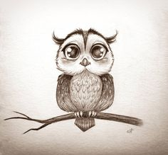 Pencil Drawing Patterns Owl by Bastet-mrr - Dark Art Drawings, Pencil Art Drawings, Bird Drawings, Cartoon Drawings, Animal Drawings, Baby Owl Tattoos, Cute Owl Tattoo, Daddy Tattoos, Tattoo Owl