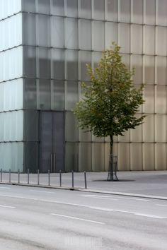 Bregenz Kunsthaus, Peter Zumthor architect.
