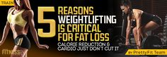 5 Reasons Weightlifting is Critical for Fat Loss!