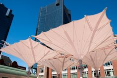 Sundance Square Umbrellas, Fort Worth
