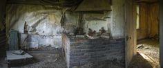 une-maison-abandonnee-dans-les-bois-envahie-par-des-dizaines-d-animaux-en-tous-genres13