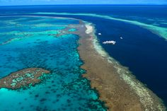 Hardy Reef in the Whitsundays is one of the spectacular outer reefs along Australia's UNESCO World Heritage-listed Great Barrier Reef.  You can access it via day boat, private charter, or helicopter. It is a magical spot for snorkelling and diving and you can even spend the night on a pontoon with Fantasea's Reef Sleep program. Thanks @Sue Henly!
