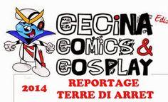 Terre di Arret: Cecina Comics & Cosplay 2014: Reportage