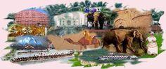 Star Tours and Travels Karelibaug Vadodara – Star Travels Vadodara - Barodabazar G/4 Chandarlok Complex, Opposite Kashiba Children Hospital, Karelibaug, Vadodara – 390018 9712111966, 9722051717 (0265) 2483786