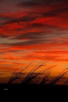 fine art photography Prairie Sunset nature by GoingTribal,
