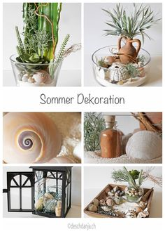 Summer decoration with sand, succulents, shells and stones, www.deschdanja.ch