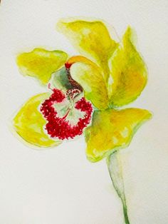 Watercolor yellow orchid. Sketch by Darya Zhuravleva