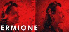 Standing ovation à l'Opéra de Lyon pourtant plus habitué aux applaudissements plus conventionnels. Discipliné et plutôt classique, le public lyonnais n'a cependant pu retenir son émotion devant la version concert d'Ermione l'opéra italien de Rossini adaptant Andromaque de Racine. Décidément, l'intrigue tragique