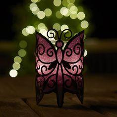 Tämä perhonen on lähes liila päivänvalossa, mutta muuttaa sävyään valon määrän muuttuessa. Votiivisomiste loppukesän tummiin iltoihin.