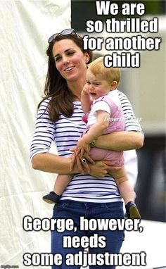 230 Best Funny Royal Memes Images Duchess Of Cambridge British
