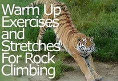 Warm Up Exercises and Stretches For Rock Climbing