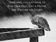 Sometimes you just have to bow your head, say a prayer, and weather the storm!
