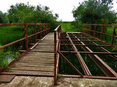 Bagolyfogó híd